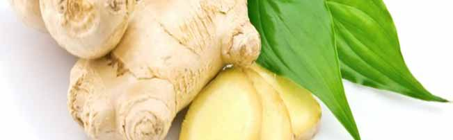 Essential oils Ginger