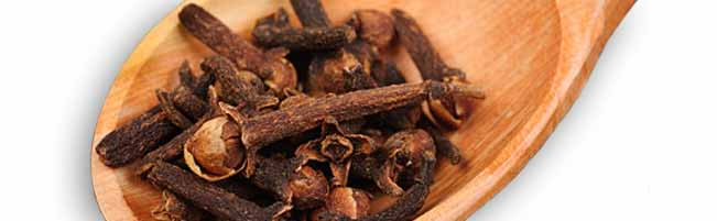 Essential oils  Clove / claw